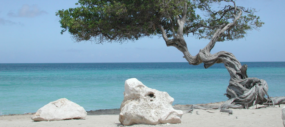 Vicino a spiagge meravigliose